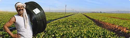 jain-irrigation-2